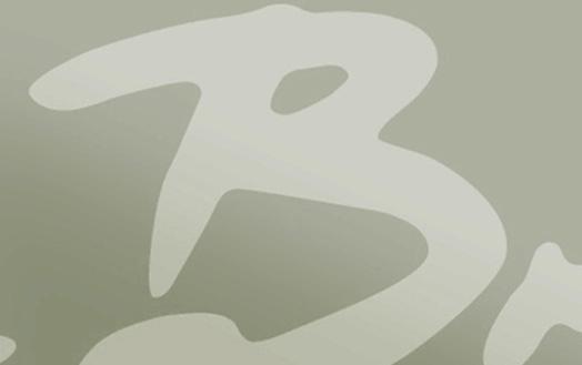 bru_mini_12